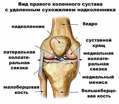 Лечение травмы коленного сустава дикуля болит колено отдает в икру
