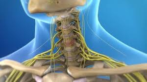 Клиники лечение остеохондроза шейного отдела позвоночника