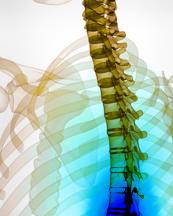 Тяньши при остеохондрозе отзывы